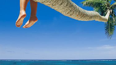 Füsse hängen von der Palme am Strand © Radovan Kraker, Fotolia.com